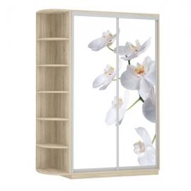 Шкаф-купе Дуо-двухдверный Орхидея Сонома