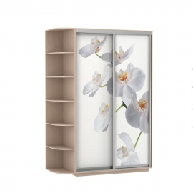 Шкаф-купе Дуо-двухдверный Орхидея Дуб молочный