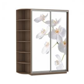 Шкаф-купе Дуо-двухдверный Орхидея Ясень шимо темный