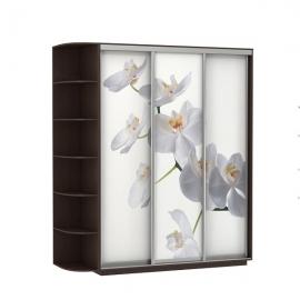Шкаф-купе Трио-трехдверный Орхидея Венге