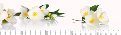 Фартук Мдф 6 мм с фотопечатью Цветы яблони